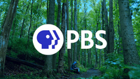 PBS ident 2019 01