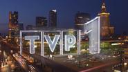 Tvp1-2010-2