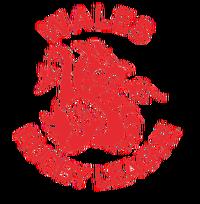 Walesrl.logo