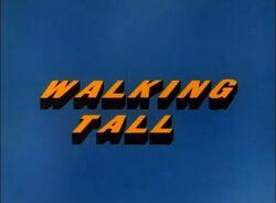 Walking Tall TV Intertitles