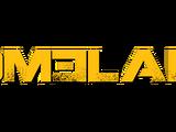 Homeland (TV series)