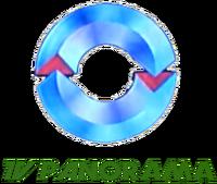 TV Panorama 1999