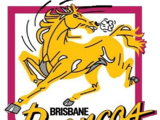 Brisbane Broncos/Other