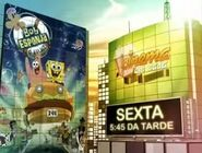 SBT 2010-2011 dia
