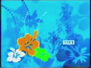 TVP1 wiosna 2005