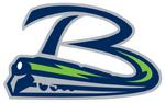 Bloomington Thunder (USHL) logo (alternate)