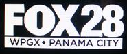 WPGX - 2019 -bug-