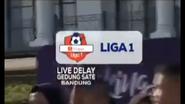 Shopee Liga 1 Indosiar