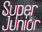 Super Junior 2012 (2)