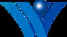 Vidavision2001