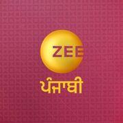 Zee Punjabi social avatar