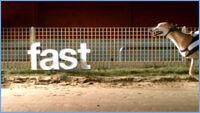 FiveFast2006