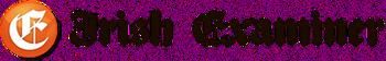 Irish Examiner 2013