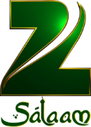 Zee Salaam 2011