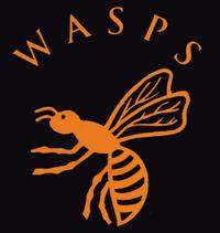 Wasps logo (until 1999)