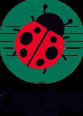 Carolina1986