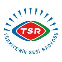 Voice of Turkey Logo