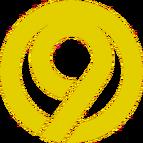 Yellow 9 Big