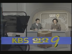 KBS 9 o'clock News Sunday Edition 1991