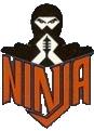 Ninja (roller coaster)