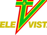 Televista (regional programmer)
