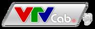VTVCab 9