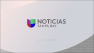 Wvea noticias univision tampa bay white second package 2019
