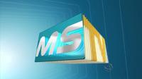 MSTV 2011