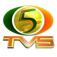 Logo tv5 10 400x400