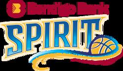 Team logo-bendigo