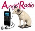 ANGEL RADIO - Hants (2016).png