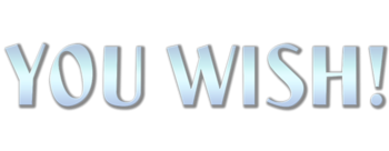 You-wish-movie-logo