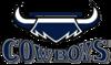 NQ Cowboys 1995 (Secondary ALT)