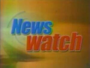 NewsWatch2004