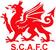 Swansea City 1973