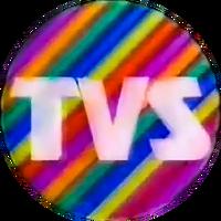 TVS logo 1988