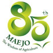 85 Years MJU