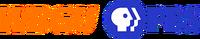 Dc878dd28f wbgutvPBS logo