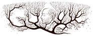 Google Ramón y Cajal 160th Birthday