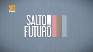 Salto para o Futuro 2011
