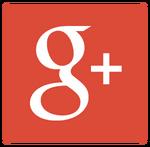 Google 2013 icon