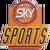 Sky Sports 1993