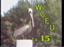 WCEU-TV 15 Tv Worth Watching 1988
