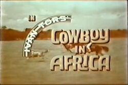Cowboys in Africa