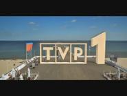 Tvp1-2010-3
