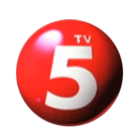 TV5 Logo (2010-2014)