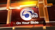 WEWS Logo 2009 NewsChannel 5-2-