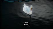 Bbctwo ni swan 2015