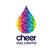 Cheer2011