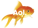 AOL/Other